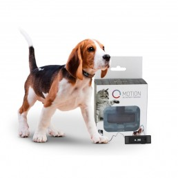 Tractive MOTION Pet Activity Tracker