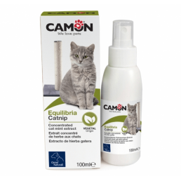 Catnip Spray Concentrato